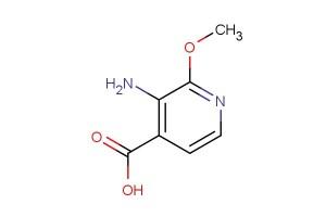 3-amino-2-methoxy-4-pyridinecarboxylic acid