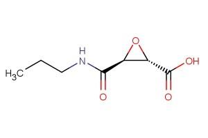 (2S,3S)-3-(propylcarbamoyl)oxirane-2-carboxylic acid
