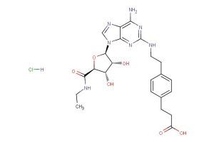 CGS 21680 HCl; CGS-21680 HCl; CGS21680 HCl