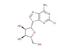 6-amino-2-chloropurine riboside