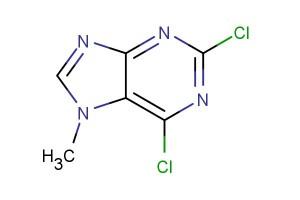 2,6-dichloro-7-methyl-7H-purine