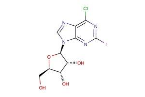 6-chloro-2-iodopurine riboside