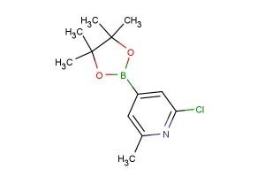 2-chloro-6-methyl-4-(4,4,5,5-tetramethyl-1,3,2-dioxaborolan-2-yl)pyridine