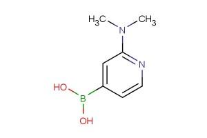 2-(dimethylamino)pyridine-4-boronic acid