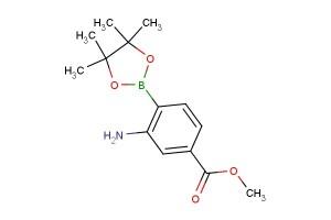 methyl 3-amino-4-(4,4,5,5-tetramethyl-1,3,2-dioxaborolan-2-yl)benzoate