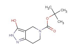 tert-butyl 3-hydroxy-6,7-dihydro-2H-pyrazolo[4,3-c]pyridine-5(4H)-carboxylate