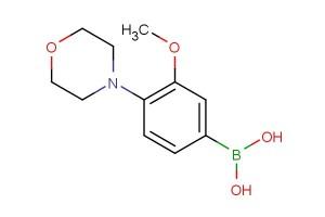 (3-methoxy-4-morpholinophenyl)boronic acid